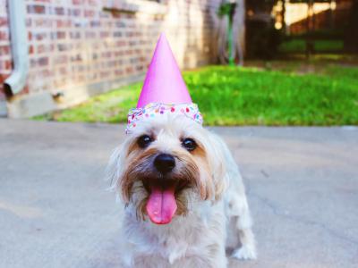 45 frases de aniversário para Facebook que felicitam pessoas queridas