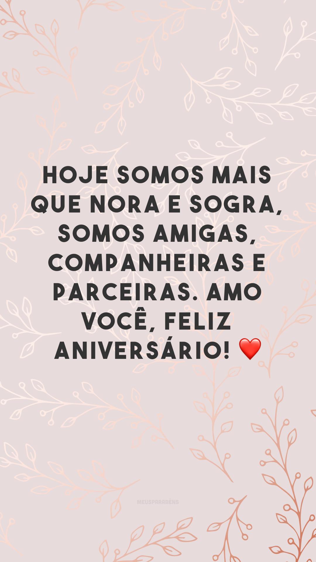 Hoje somos mais que nora e sogra, somos amigas, companheiras e parceiras. Amo você, feliz aniversário! ❤