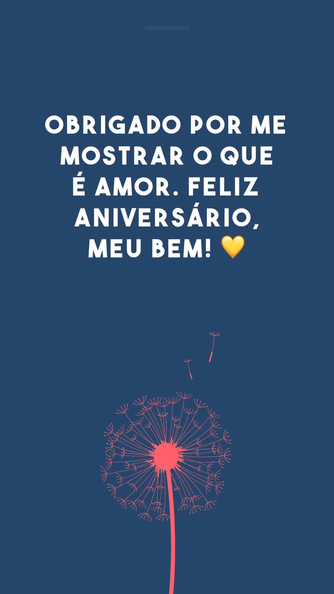 Obrigado por me mostrar o que é amor. Feliz aniversário, meu bem! 💛