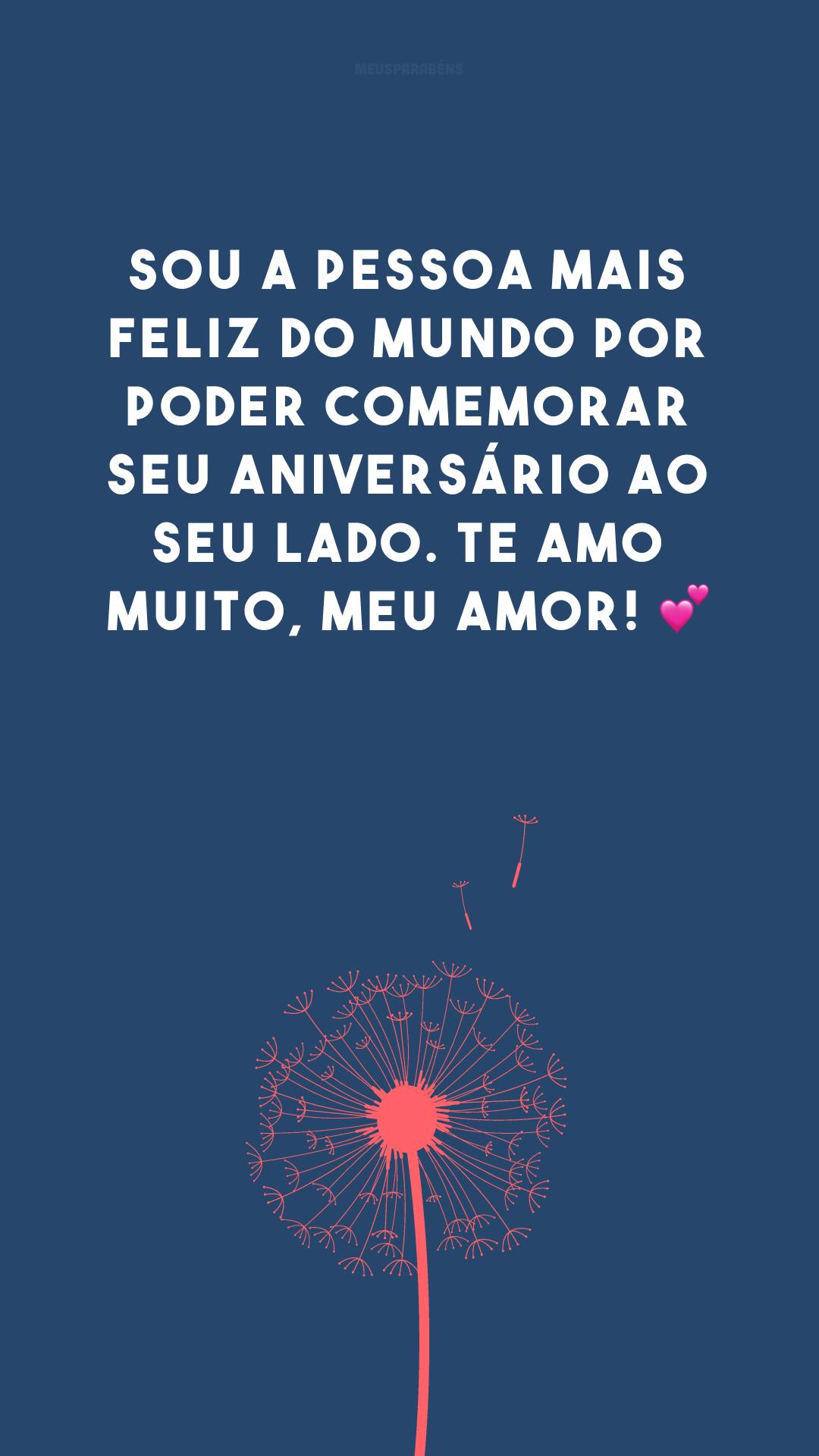 Sou a pessoa mais feliz do mundo por poder comemorar seu aniversário ao seu lado. Te amo muito, meu amor! 💕
