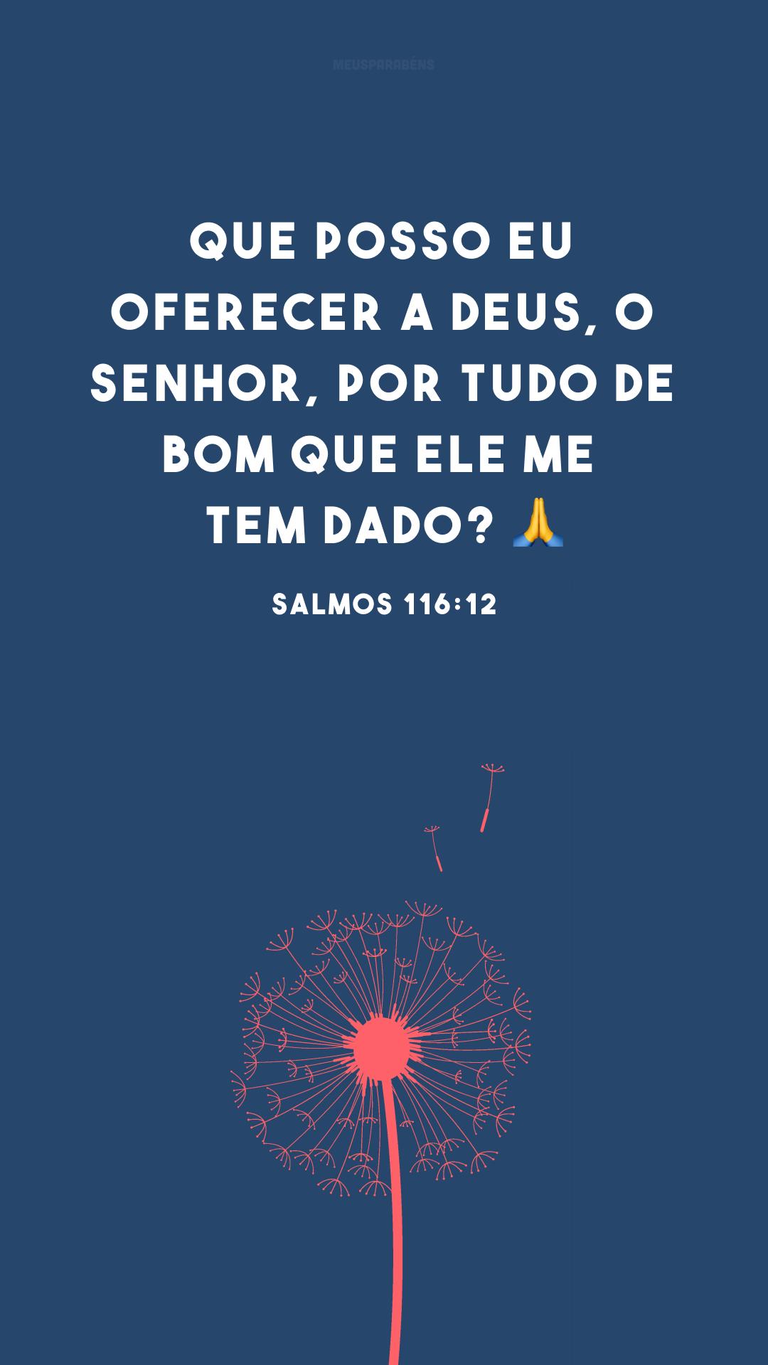 Que posso eu oferecer a Deus, o Senhor, por tudo de bom que ele me tem dado? 🙏<br />