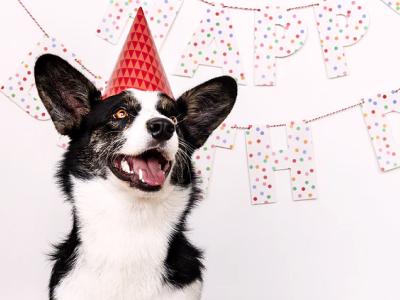 40 frases de aniversário com carinho para felicitar as pessoas queridas