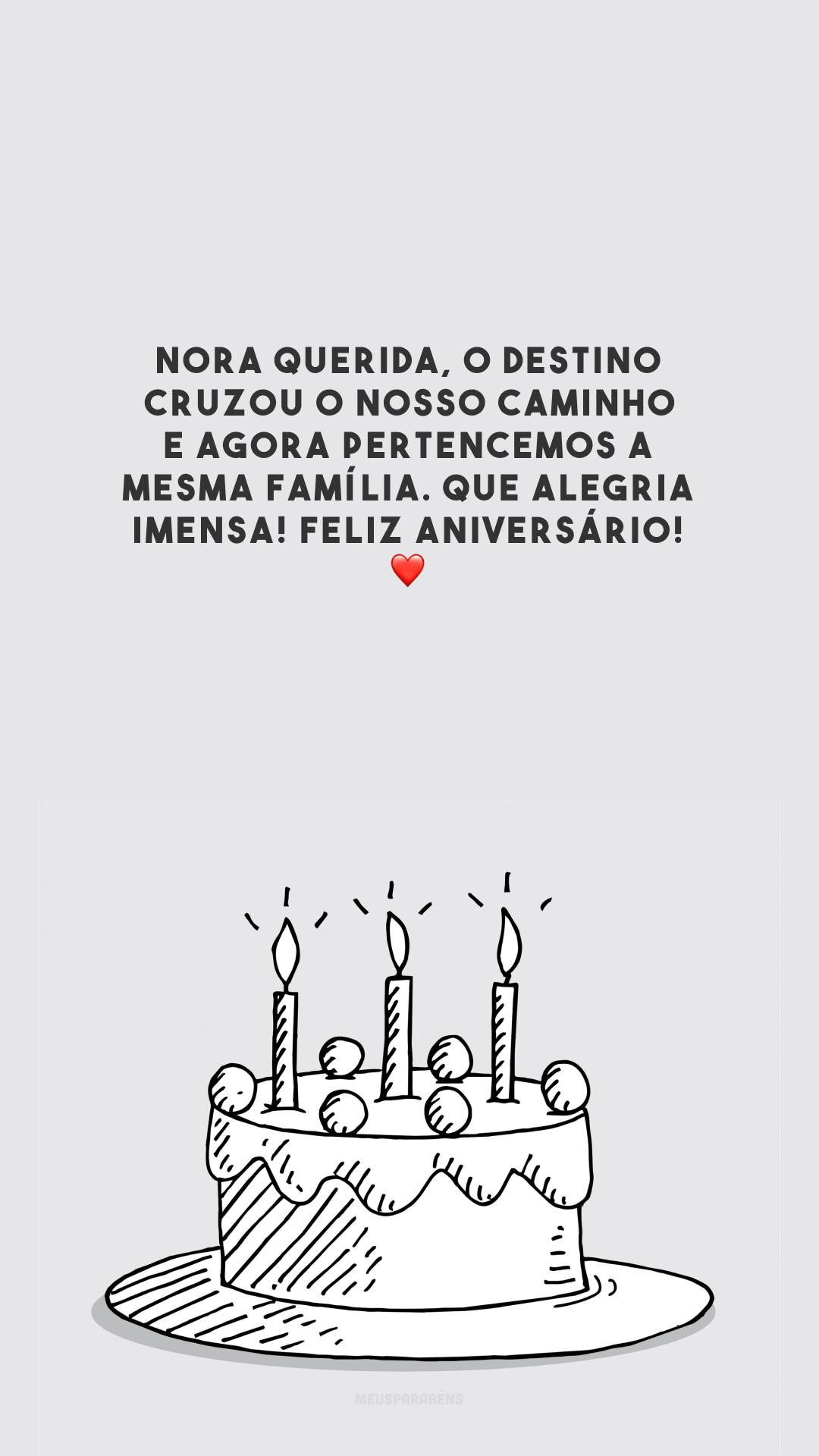 Nora querida, o destino cruzou o nosso caminho e agora pertencemos a mesma família. Que alegria imensa! Feliz aniversário! ❤️