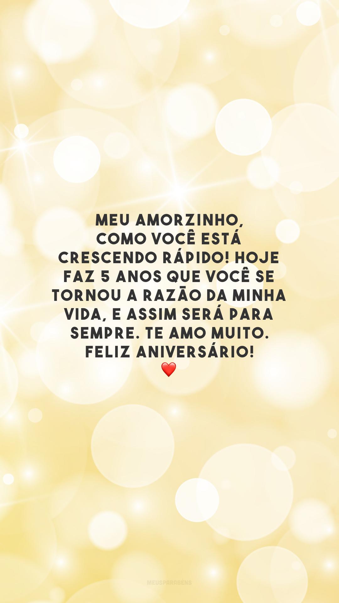 Meu amorzinho, como você está crescendo rápido! Hoje faz 5 anos que você se tornou a razão da minha vida, e assim será para sempre. Te amo muito. Feliz aniversário! ❤️