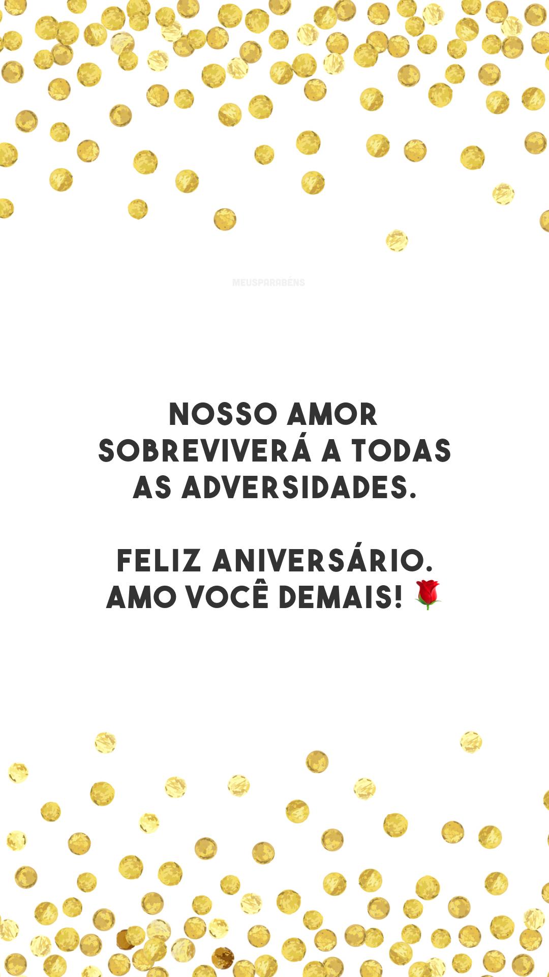 Nosso amor sobreviverá a todas as adversidades. Feliz aniversário. Amo você demais! 🌹