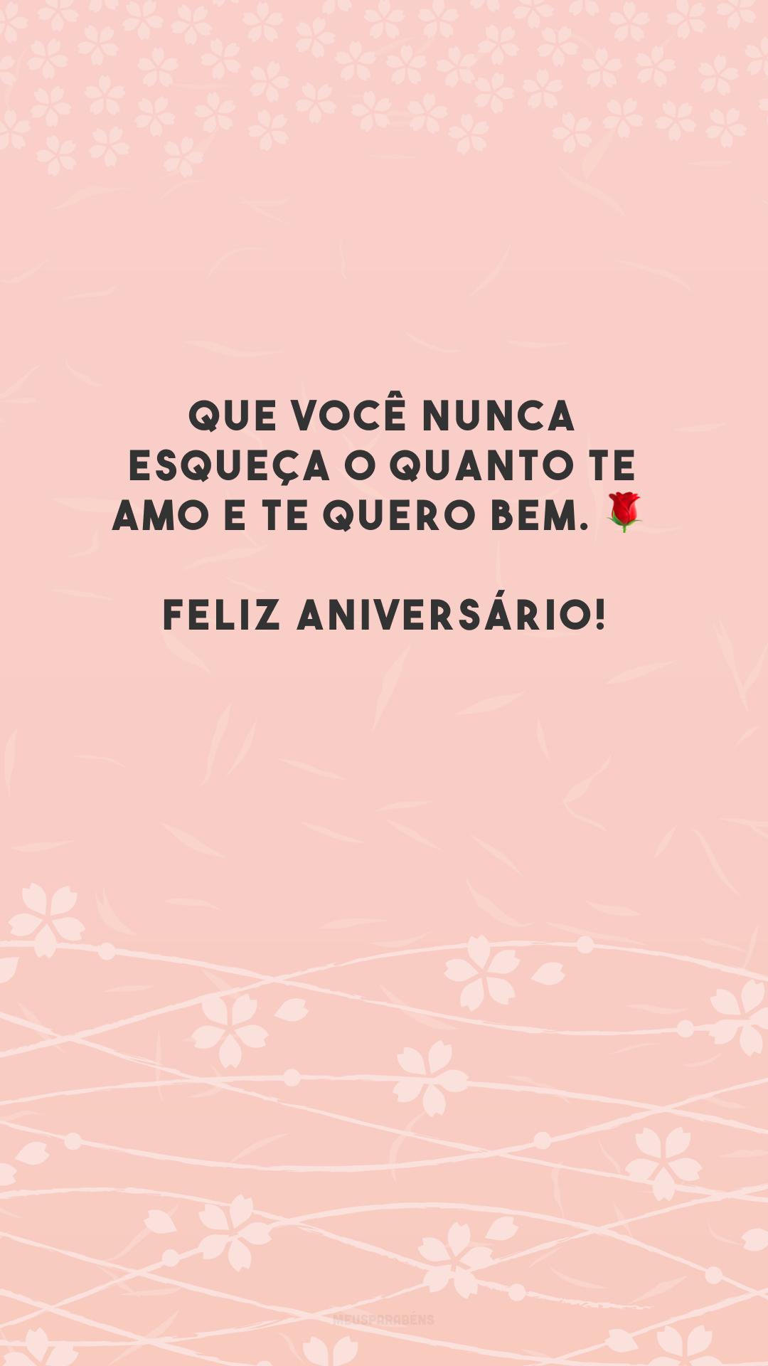 Que você nunca esqueça o quanto te amo e te quero bem. 🌹 Feliz aniversário!